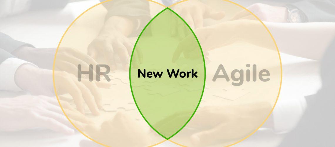 VennDiagram HR & Agile